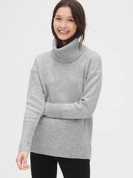 Brushed Turtleneck Sweater