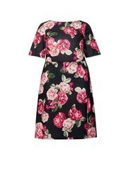 **DP Curve Multi Colour Floral Print V-Back Skater Dress