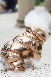 Gold Dog Snow Suit / Jumpsuit