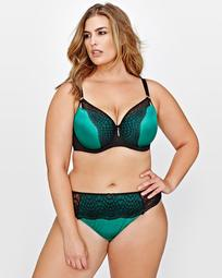Ashley Graham Showstopper with Contrast Lace