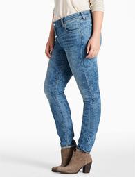 Plus Size Ginger Skinny Jean In Belton