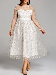 Plus Size Embroidery Floral Tulle Tea Length Dress