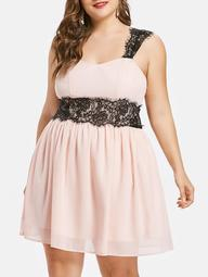Plus Size Lace Panel Fit and Flare Dress