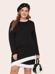 Plus Two Tone Asymmetrical Hem Sweater Dress
