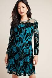 Juliet Embroidered Velvet Mini Dress
