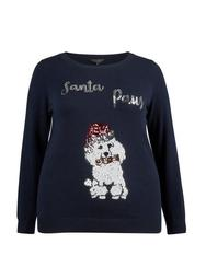 **DP Curve Navy Santa Paws Christmas Jumper